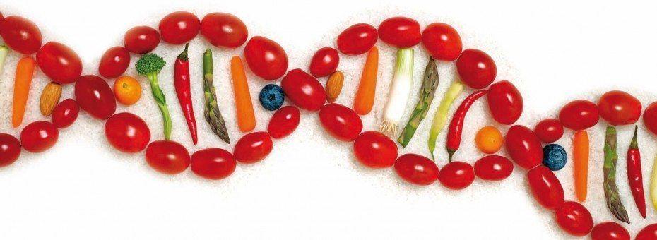 Nutrigenómica y Nutrigenética. Presente y futuro de la