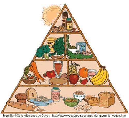 piramide de alimentos vegana