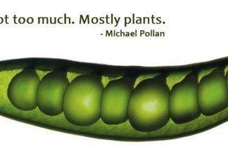 Comer bien michael pollen