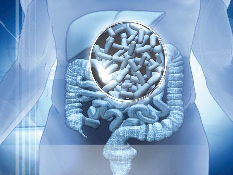 Microbiota commensal que es gluten