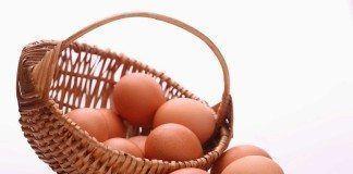 El huevo y el colesterol
