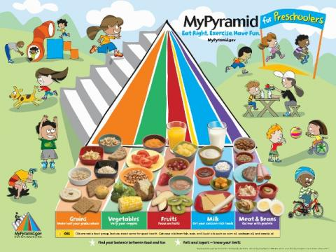 MyPlate illustrates the five food groups that are the building blocks for a healthy diet using a familiar image a place setting for a meal