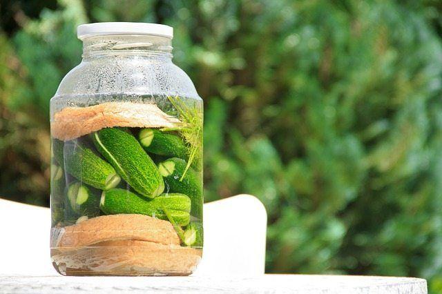 alimentos ecologicos