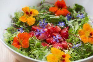 Ensalada con flores_Alimmenta