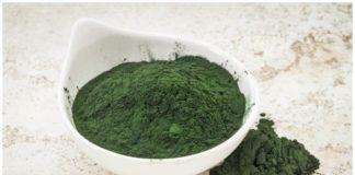 alga espirulina