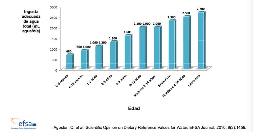 consumo de agua según etapas de la vida
