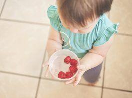 introduccion alimentación complementaria