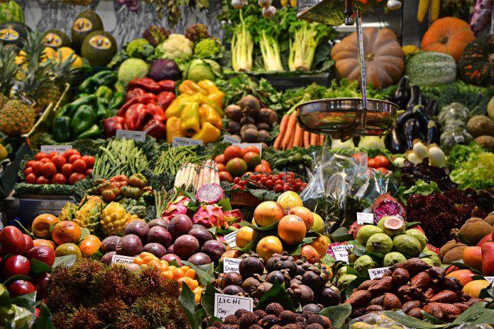fibra en la dieta